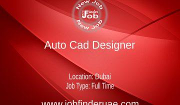 Auto Cad Designer