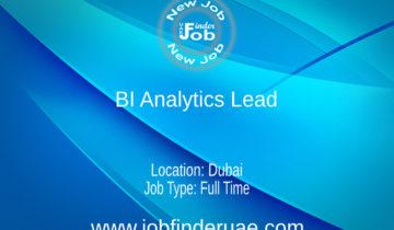 BI Analytics Lead