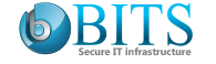 Bits Secure I.T Infrastructure LLC