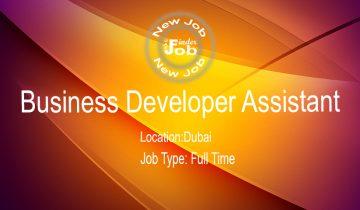 Business Developer Assistant