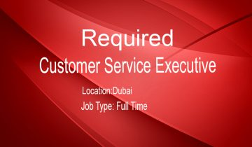Customer Service Executive
