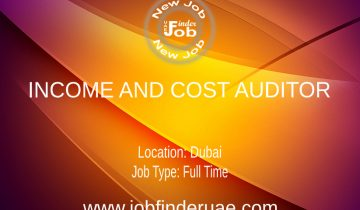 INCOME AND COST AUDITOR