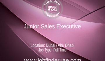Junior Sales Executive