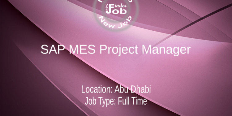 SAP MES Project Manager